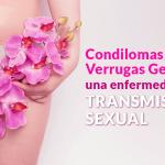 Condilomas o Verrugas genitales, una enfermedad de transmisión sexual