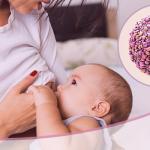 Lactancia materna  un método beneficioso en la prevención contra el  cáncer de mama
